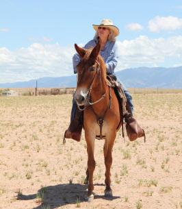 Mary Randall Obituary - Belen, NM | Noblin Funeral Service
